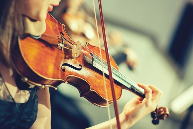 fiddle vs violin 6 key differences you must know