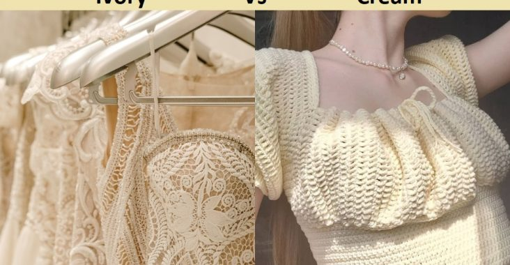 Difference Between Ivory and Cream