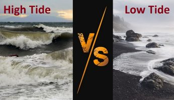 difference between high and low tide