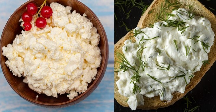 difference between cottage cheese and cream cheese