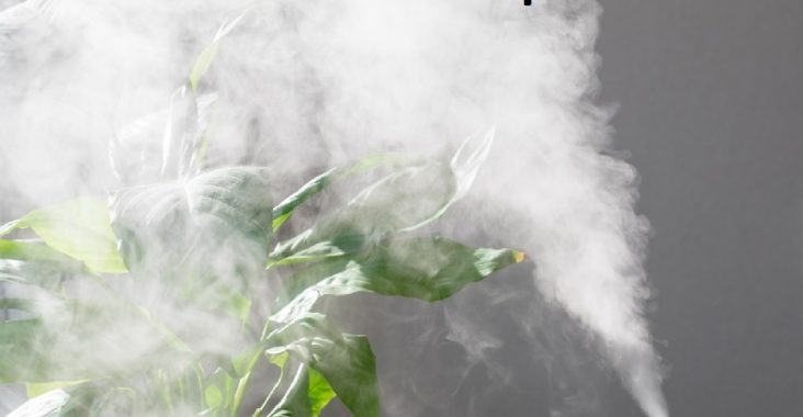 difference between humidifier and vaporizer