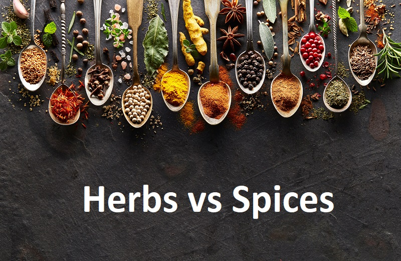 herbs vs spices